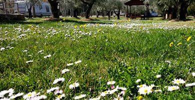 Camping para niños con sombra y piscina barato en Guara cerca de Huesca y el pirineo