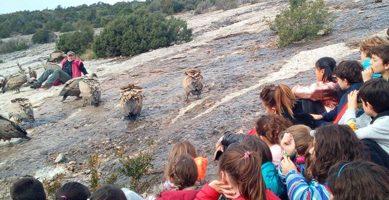 actividad con niños en Guara
